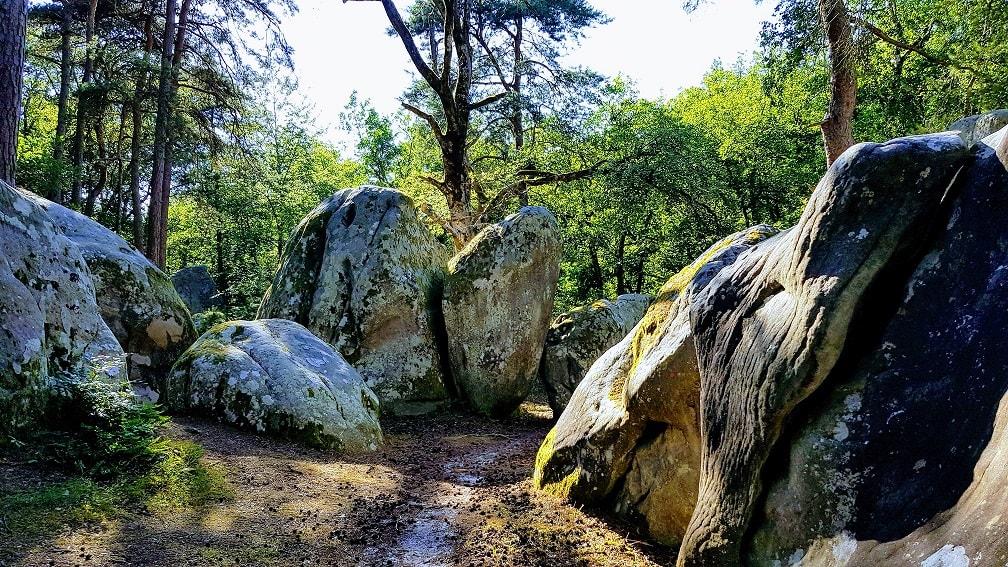 ANNULE – Week-end à Fontainebleau